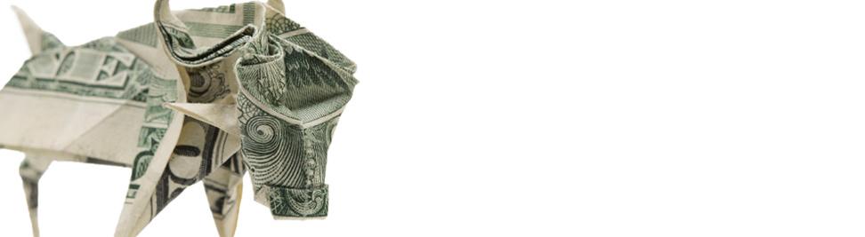 bull-cash